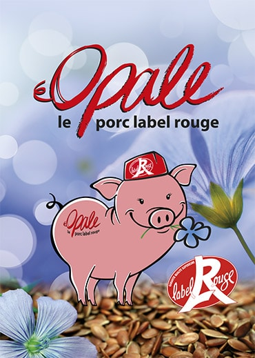 Opale le Porc Label rouge